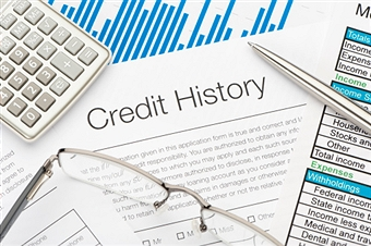 175427833 Credit History